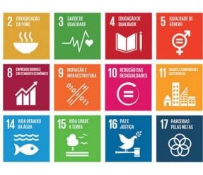 Brasileiros elegem saúde, educação e erradicação da fome e pobreza prioridades, diz estudo da ONU